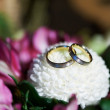 Gold wedding rings on flower aster — Stock Photo