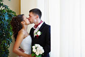Happy kiss bride and groom — Stok fotoğraf