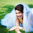 Stock Photo: Fanny bride on grass