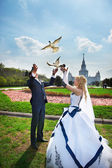 Newlyweds release pigeons — Stock Photo