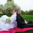 Happy bride and groom in cherry garden in rainy weather — Stock Photo