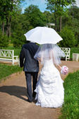 Happy bride and groom goes along the path — Stock Photo