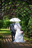 Bride and groom goes along the arch — Stock Photo