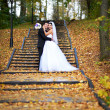 Happy bride and groom in yellow autumn foliage — Stock Photo #43689229