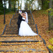 Happy bride and groom in yellow autumn foliage — Stock Photo #43882023
