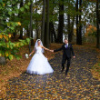 Happy bride and groom walking in yellow autumn park — Stock Photo