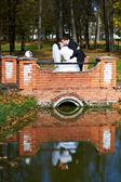Kussen bruid en bruidegom op wedding wandeling — Stockfoto