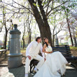 Happy bride and groom on bench — Stock Photo