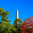 Stock Photo: Washington Monument