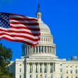 Stock Photo: USFlag and Capitol Building