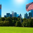Park of New York with Flag — Stock Photo