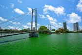 Bridge over the lake — Stock Photo
