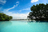 Infinity swimming pool at Hotel Kandalama — Stock Photo