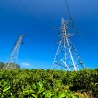 Power Tower at tea estate — Stock Photo