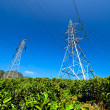 Power Tower at tea estate — Stock Photo #33024085
