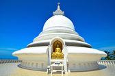 Japanese Peace Pagoda — Stock Photo