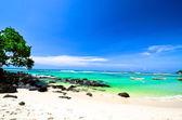 Paisaje de playa hermosa — Foto de Stock