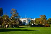 White house building — Stock Photo