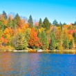 Autumn forest reflecting in calm lake — Stock Photo #34120985