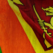 Sri lankan flag — Stock Photo