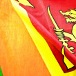 Sri lankflag — Stock Photo #34610213