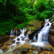 Water fall in the jungle — Stock Photo