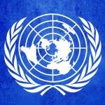 Birleşmiş Milletler bayrağı — Stok fotoğraf #36155355