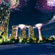 Night view of The Supertree Grove at Gardens by the Bay in Singapore — Foto de Stock