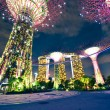 Night view of The Supertree Grove at Gardens by the Bay in Singapore — Stock Photo #37488389