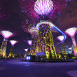 Night view of The Supertree Grove at Gardens by the Bay in Singapore — Stock Photo #37488399