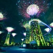 Night view of The Supertree Grove at Gardens by the Bay in Singapore — Foto Stock