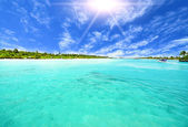 Amazing island and pristine beach in Maldives — Stock Photo