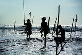 Sri lankan traditional stilt fisherman — Стоковое фото