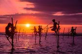 Pescador de Sri Lanka zancos tradicionales — Foto de Stock