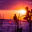 Sri lankan traditional stilt fisherman — Stock Photo #42314557