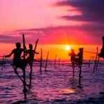 Sri lankan traditional stilt fisherman — Stock Photo #42314625