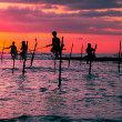 Sri lankan traditional stilt fisherman — Stock Photo #42314663