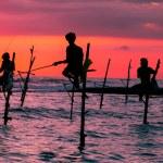 Sri lankan traditional stilt fisherman — Stock Photo