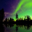 Northern lights — Stock Photo #45223511