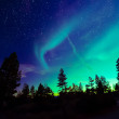 Northern lights — Stock Photo #45416931