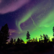 Northern lights — Stock Photo #45416977