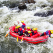 A group of men and women white water rafting — Stock Photo #45430563