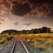 Train in the landscape — Stock Photo