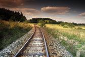 Train in the landscape — Stock Photo