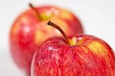 Twee heerlijke appels — Stockfoto
