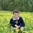 Child among flowers — Stock Photo