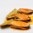 Mussels with laurel — Stock Photo
