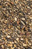 Pebbles from the beach 2 — Stock Photo