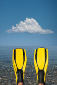 Yellow fins — Stock Photo