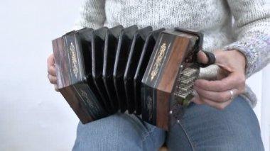 Concertina player — Stock Video